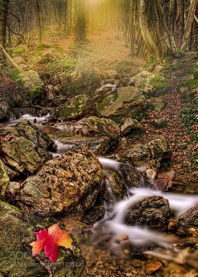 Photograph arden flow by Patrick Strik on 500px