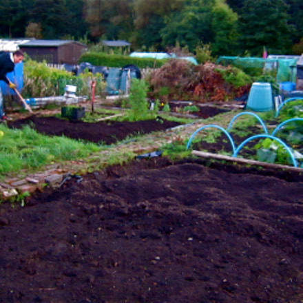 Digging over the allotment, Canon IXUS 300 HS