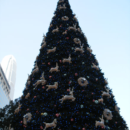 Hong Kong Christmas Tree, Fujifilm FinePix F650