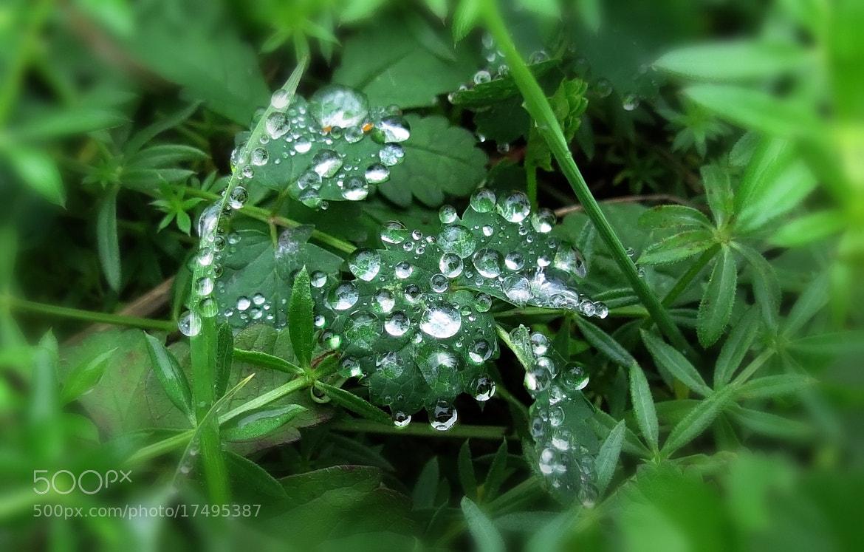 Photograph diamonds by INNA SAYGALO on 500px