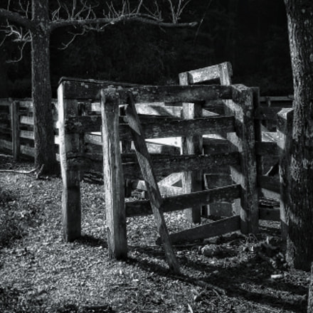 Old wooden fence and, Canon EOS DIGITAL REBEL XS, Tamron AF Aspherical 28-200mm f/3.8-5.6