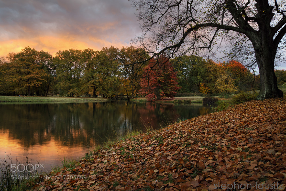 Photograph Branitzer Herbst by Drossel ST on 500px