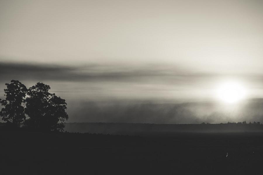 Misty sunset.