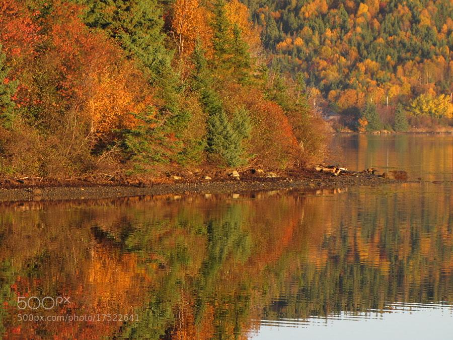 fall scene taken at the causeway to Random Island