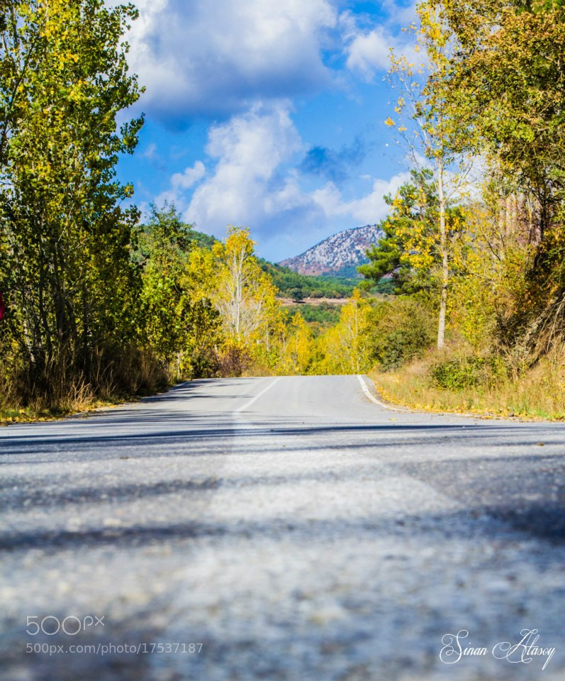 Photograph The Road by Sinan Atasoy on 500px