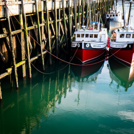 Boats in Digby, Nova Scotia.