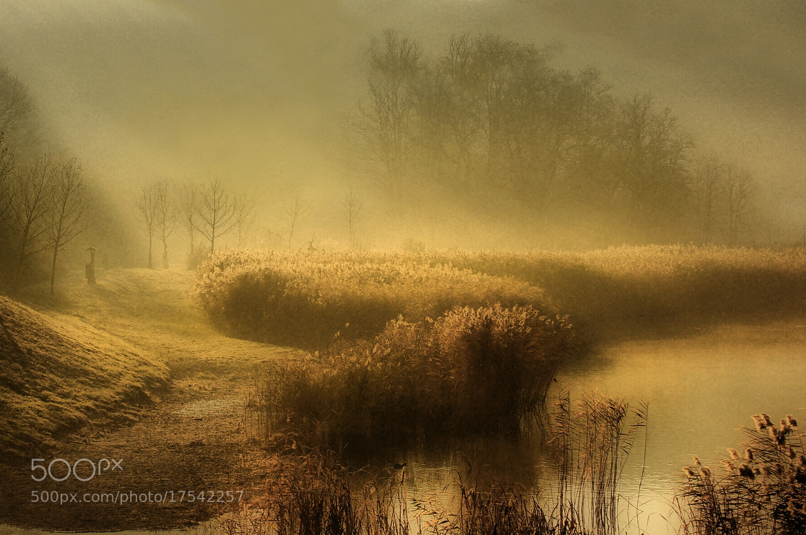 Photograph Morning lights by Andy 58 on 500px