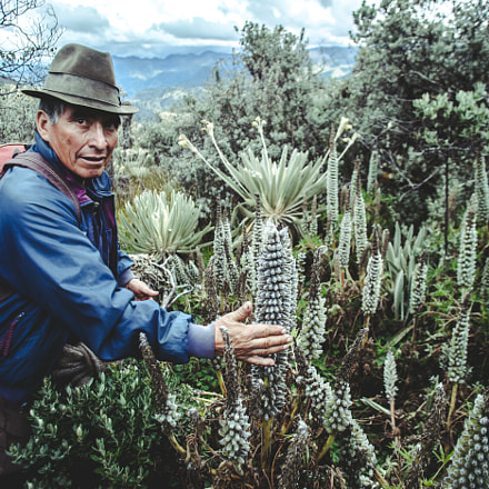Local in the Andes, Canon EOS 5D MARK II, Canon EF 20mm f/2.8 USM