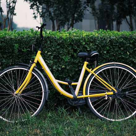 yellow bike, Sony ILCE-7, Sony FE 55mm F1.8 ZA