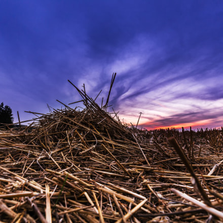 Stubble field and blue, Canon EOS 6D, Canon EF 16-35mm f/4L IS USM