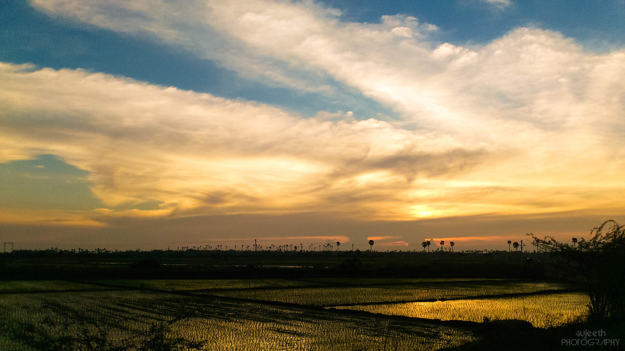 Photograph greeny sunset by sujeeth kumar on 500px