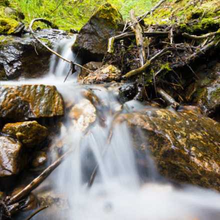 Mountain Stream, Canon EOS REBEL T2I, Tokina AT-X 11-20 F2.8 PRO DX Aspherical 11-20mm f/2.8