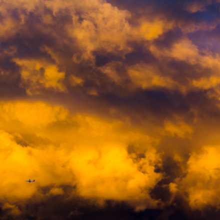 Sunset Flight, Canon EOS REBEL T2I, Canon EF 70-200mm f/4L IS