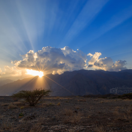 Rays of light at, Canon EOS 6D, Canon EF 16-35mm f/2.8L II