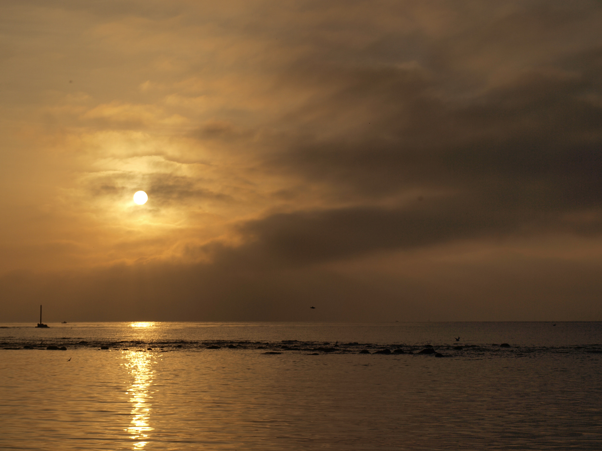 Photograph first sun of the year by rumiko nishi on 500px