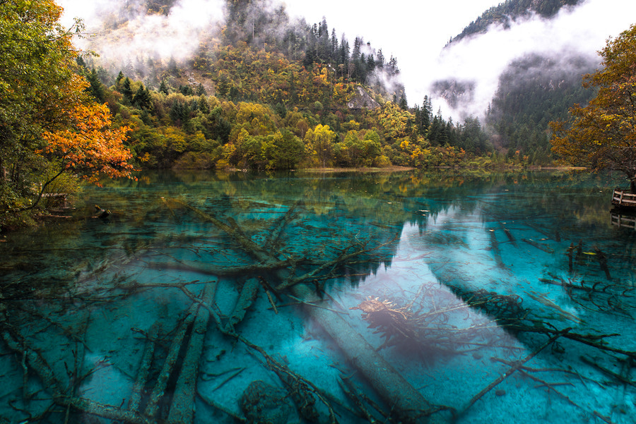 Photograph Five Colour Lake by Evgeny Tchebotarev on 500px