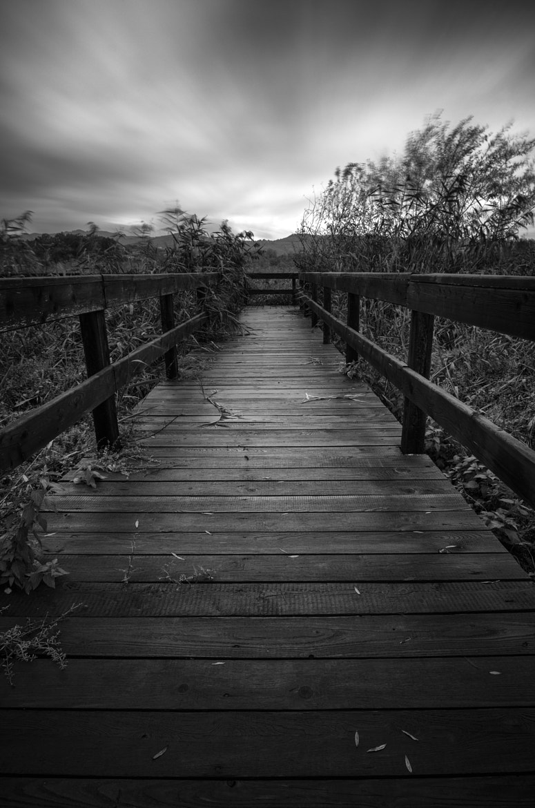 Photograph A long way to nowhere by Alessandro Di Vito on 500px