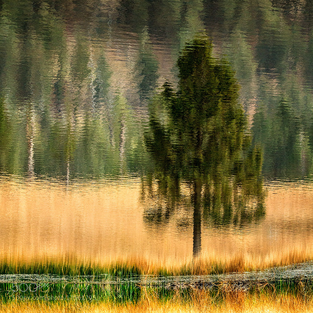 Photograph Intimate Landscape ( II ) by Ivan Peña on 500px