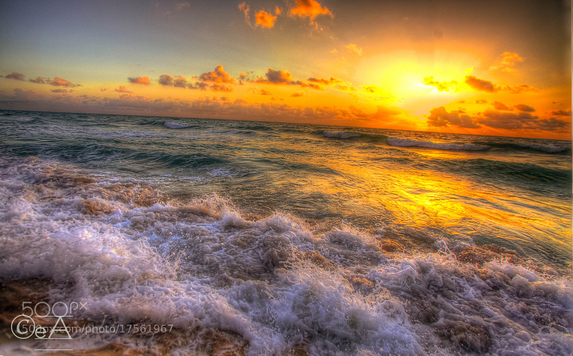 Photograph THE SEA OF LOVE by Ershad Ashraf on 500px
