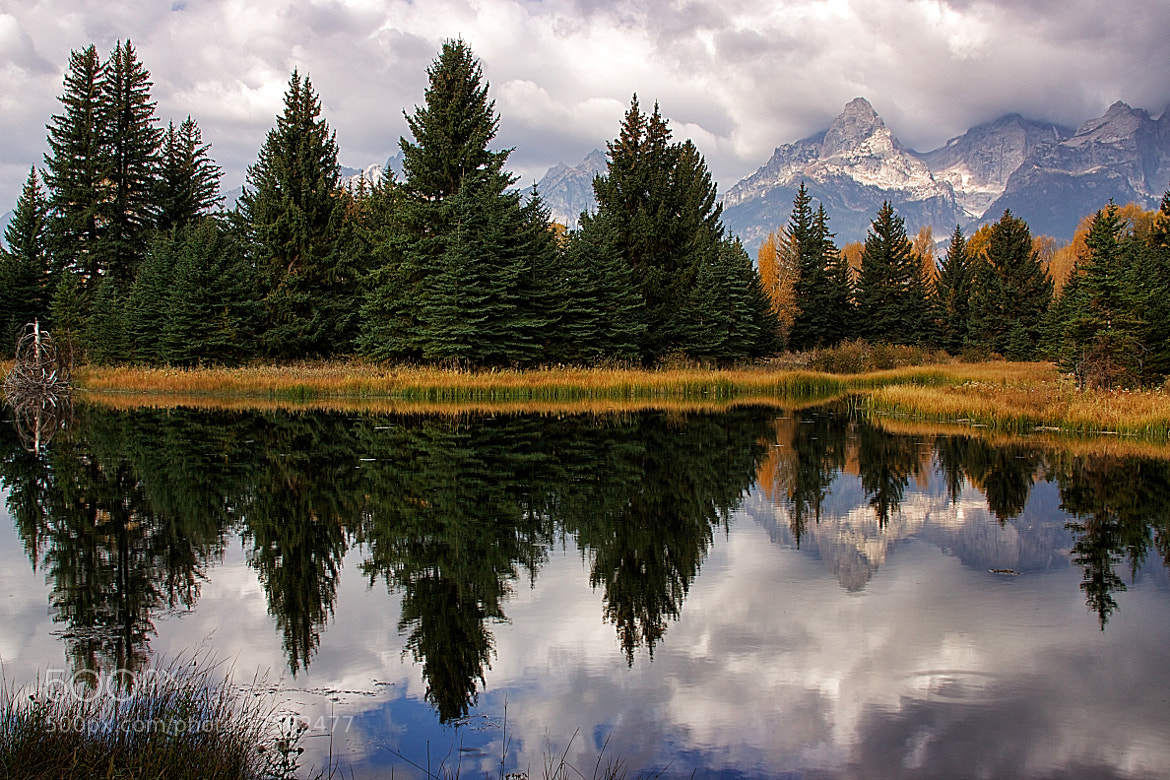 Photograph Schwabacher Landing by Bill D Bell on 500px