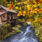 The Old Grist Mill in Washington State in the fall of 2012. Peak foliage had just passed and the leaves were burning out their last colors of red, orange, and brown, which added a nice foreground in this shot.  All Rights Reserved. Copyright © Raffian Photo, Inc.  Please visit my site, raffianphoto.com, if you're interested in purchasing a print or downloading a digital version of this image.  Please don't use my image(s) on websites, blogs or other media without my explicit permission.