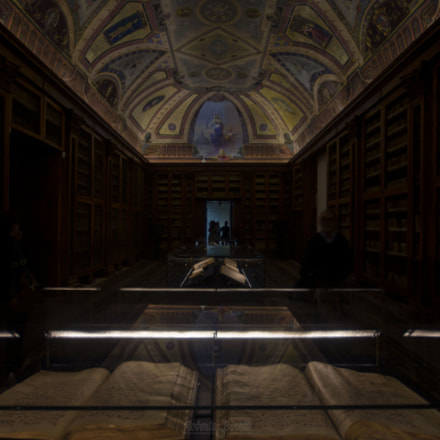 Religious Library, Nikon D5100, Sigma 10-20mm F4-5.6 EX DC HSM