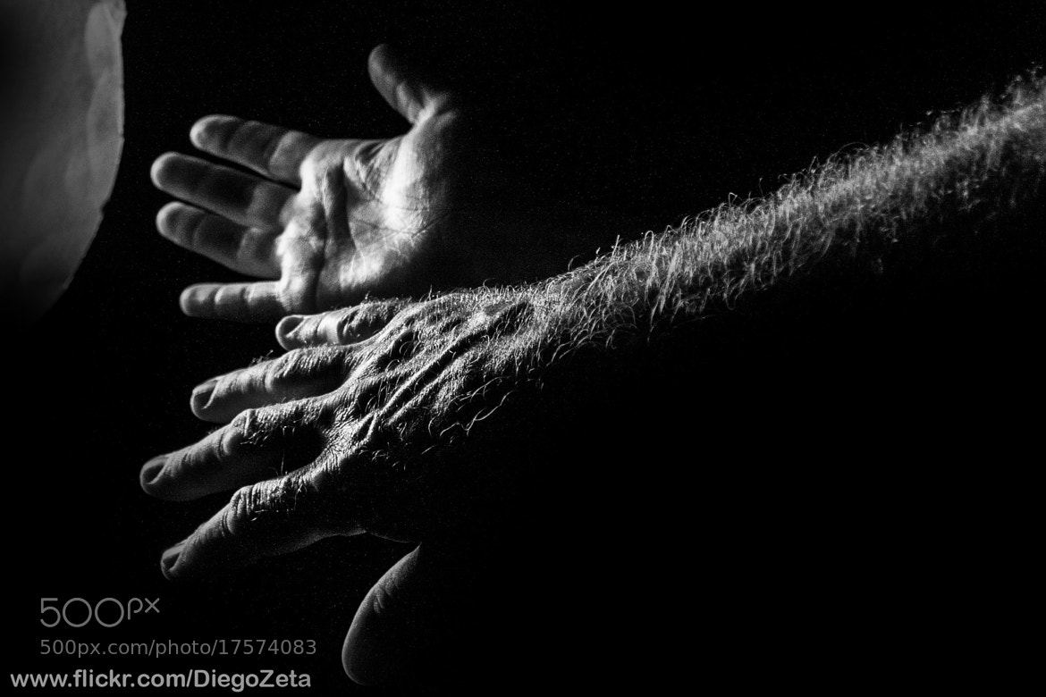 Photograph Hands by Diego Zanandrea on 500px