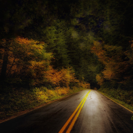 Larch Mountain Road Portland, Apple iPhone 6s, iPhone 6s back camera 4.15mm f/2.2