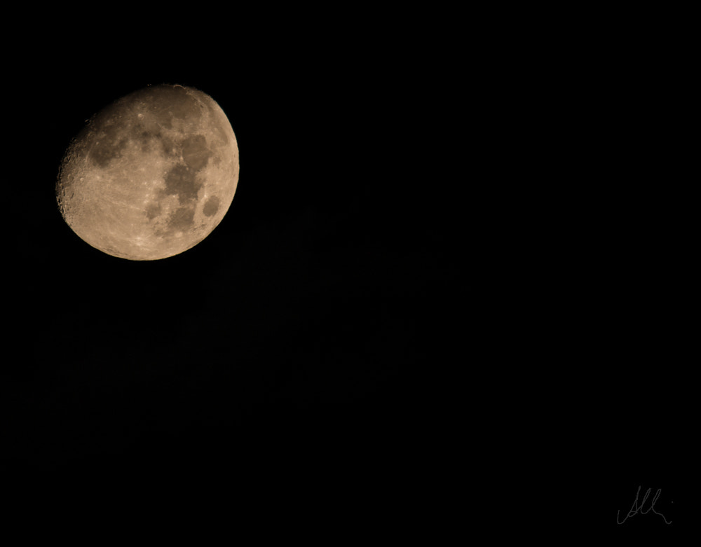 Photograph Fly me to the moon... by Albin Brunnbauer on 500px