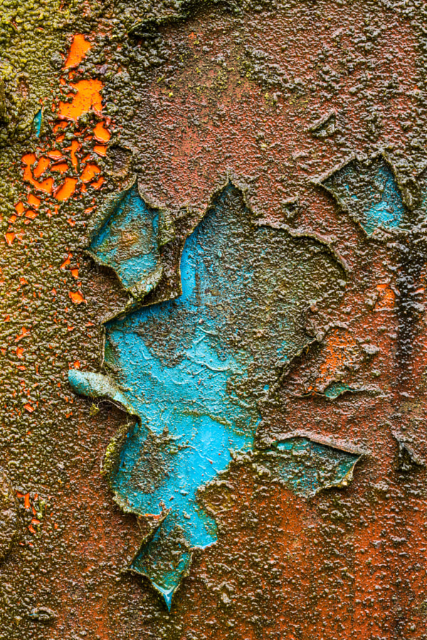 Blue paint detail
