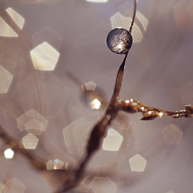 Cristal ball by Bastien HAJDUK (Troudd)) on 500px.com