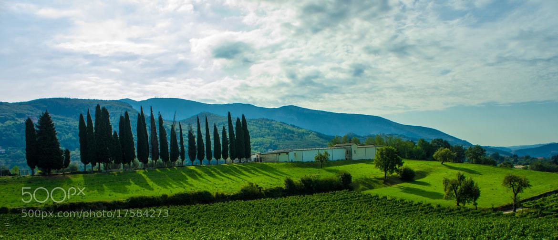 Photograph Green Field by Prashan Fernando on 500px