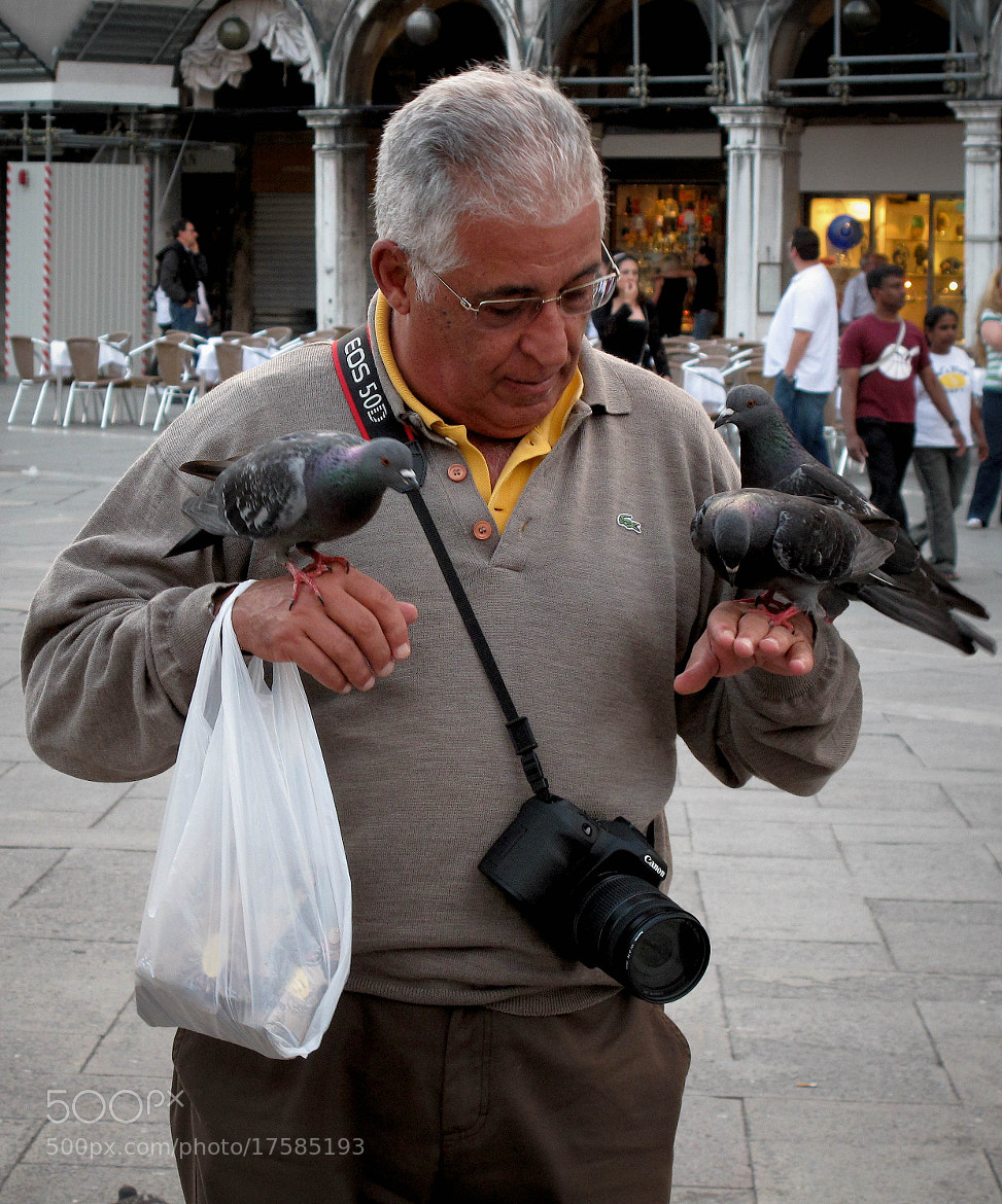 Photograph The Pigeons of St. Mark's Square by Steven Blackmon on 500px