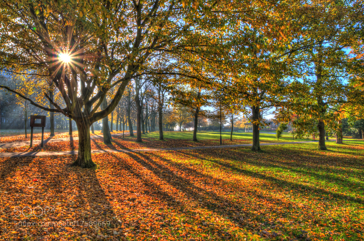 Photograph Leazes Park Autumnal HDR by Phil Whittaker on 500px