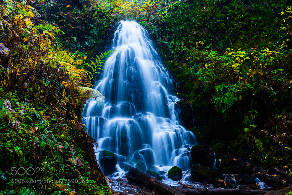 Photograph  Fairy falls by Matt Sven Bjork on 500px