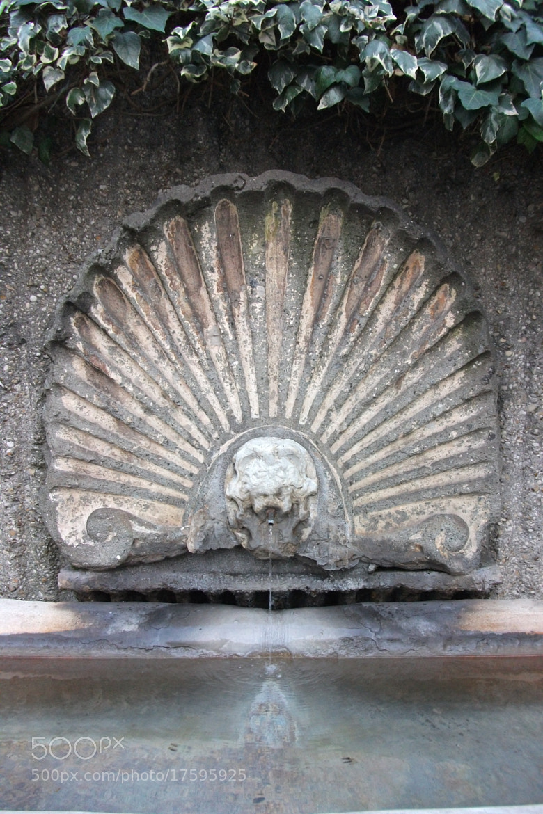Photograph Fountain in Rome by Maria Francesca Gallifante on 500px