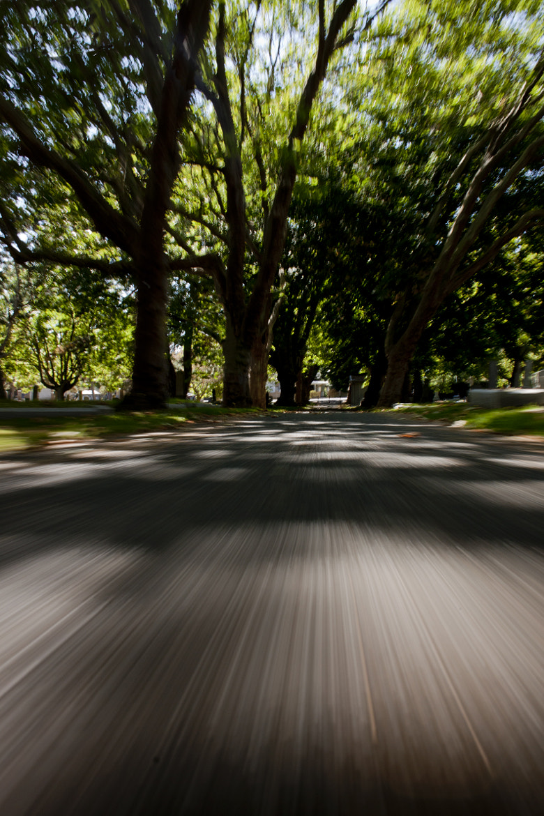 Photograph Cemetary Speed by Andrew Cameron on 500px