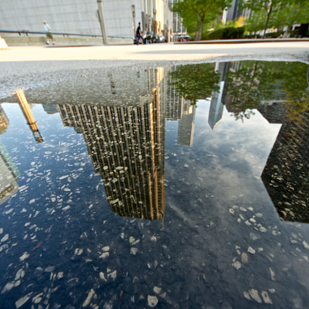 Chicago in puddle, Canon EOS 7D MARK II, Sigma 8-16mm f/4.5-5.6 DC HSM