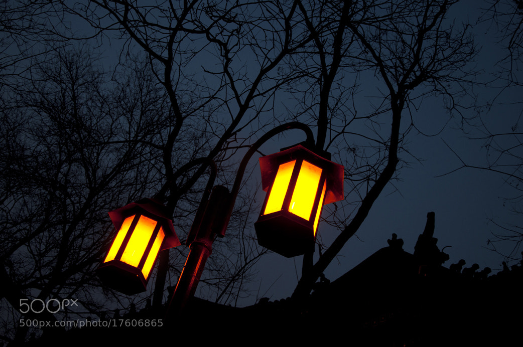 Photograph Street light by Xu Wei on 500px
