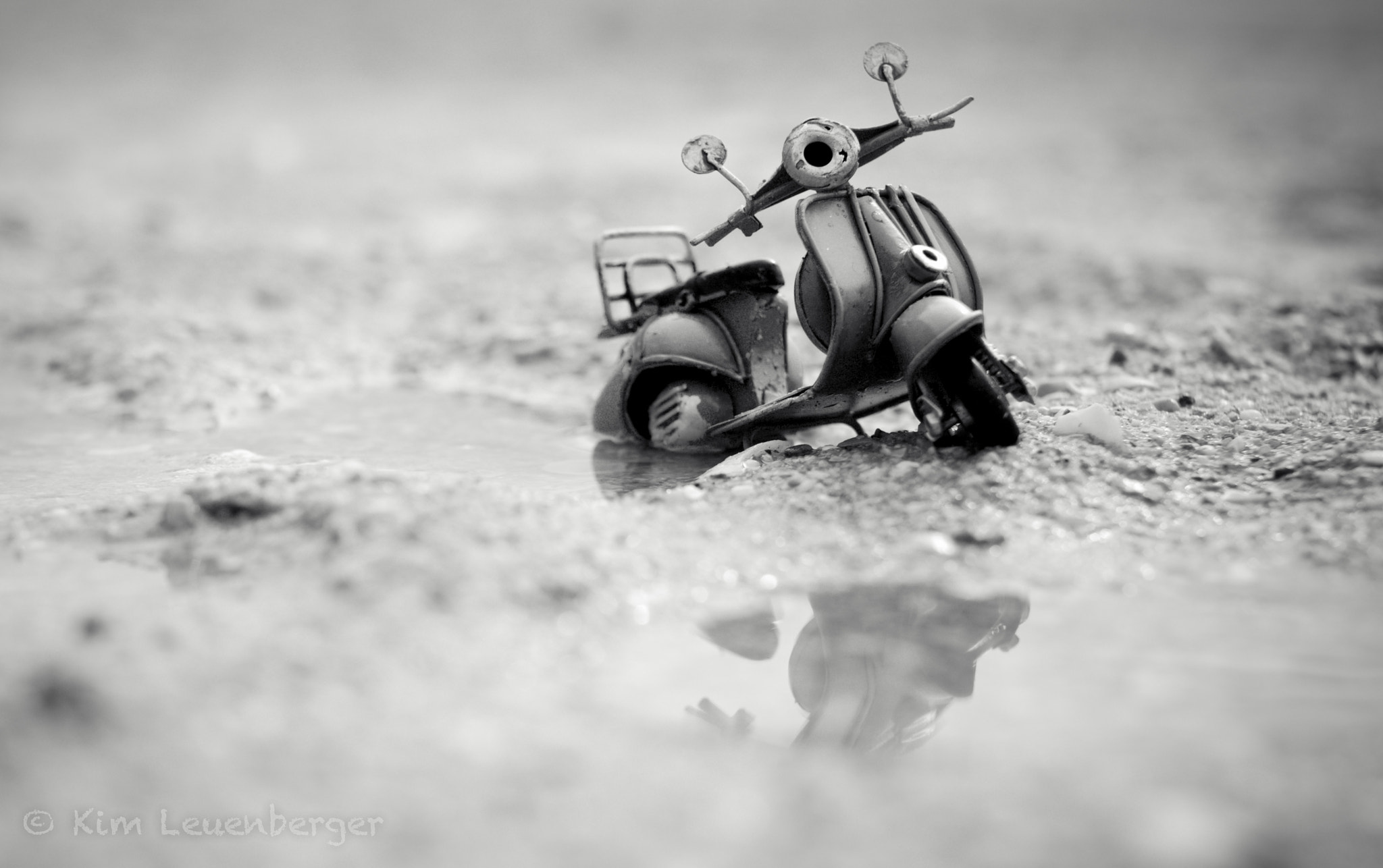 Photograph Still Standing by Kim Leuenberger on 500px