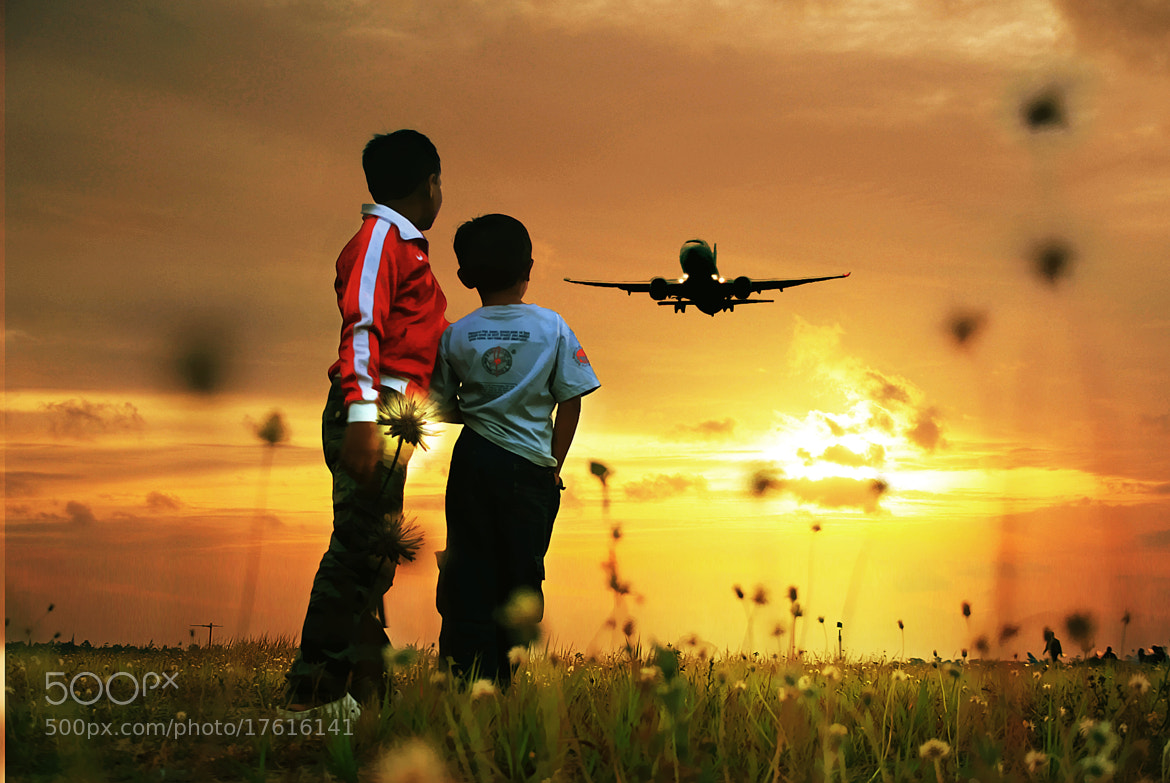 Photograph where they go by 3 Joko on 500px