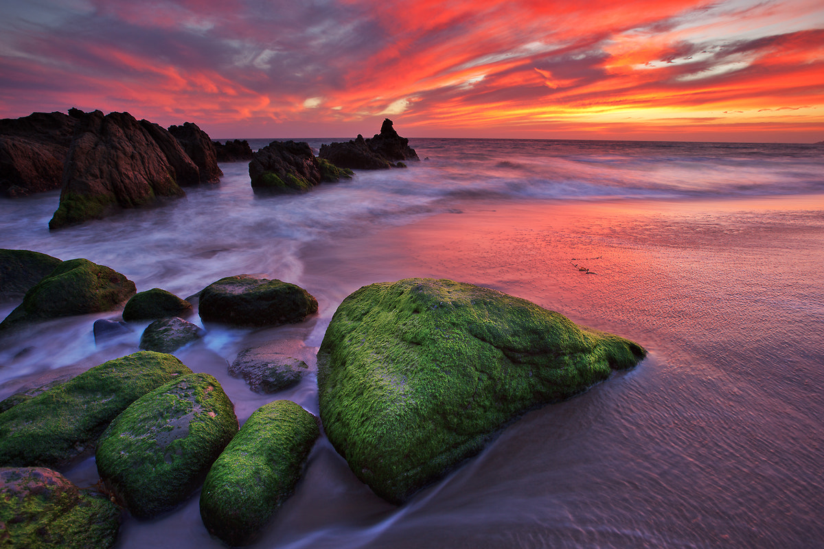 Photograph Best Sunset by Shawn Park on 500px