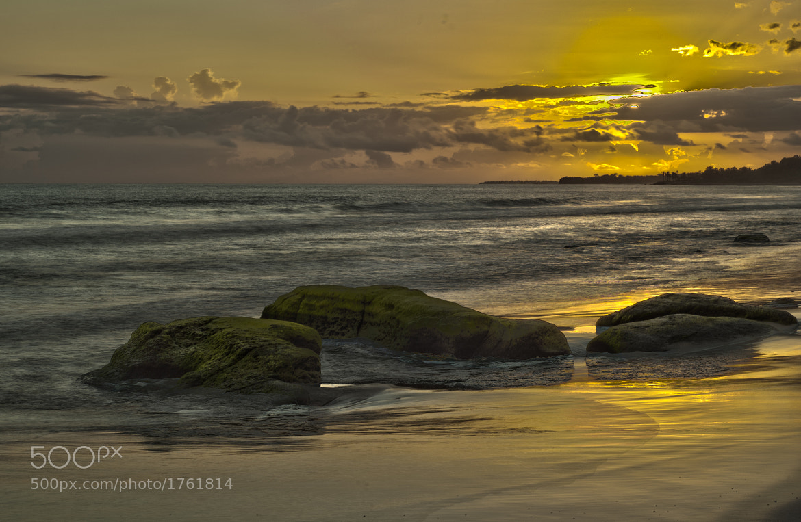 Photograph Yellow Sun by Gustavo Mondragon on 500px