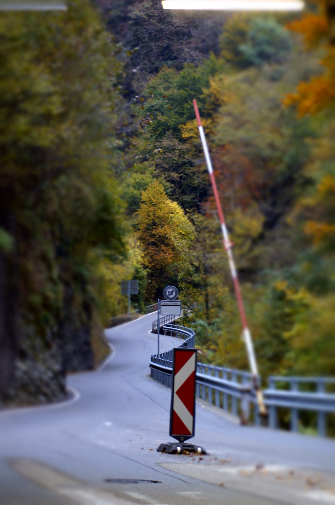 Photograph The way to autumn by Enrico Dalessandri on 500px