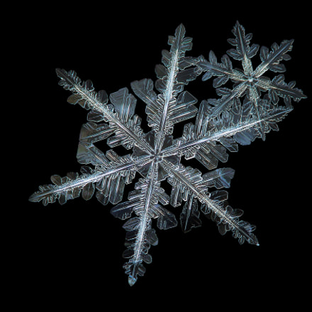 Snowflakes isolated on black, Canon POWERSHOT A650 IS