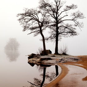 Silence by Anne Ståhl (annecstahl)) on 500px.com