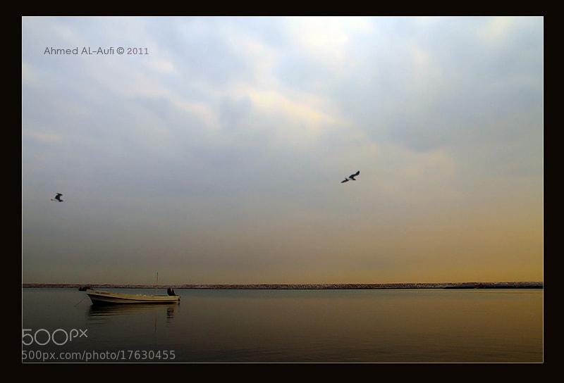 Photograph the calm by AHMED AL-AUFI on 500px