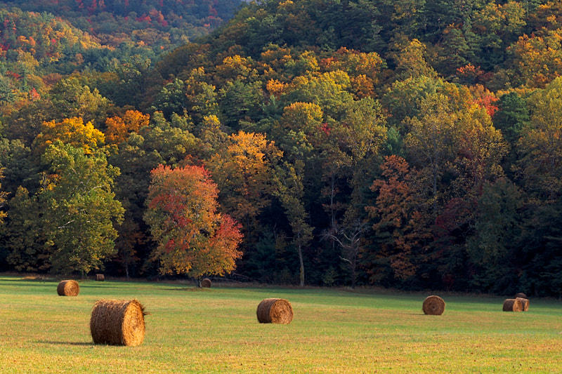 Photograph Cades Cove by Jim Cole on 500px