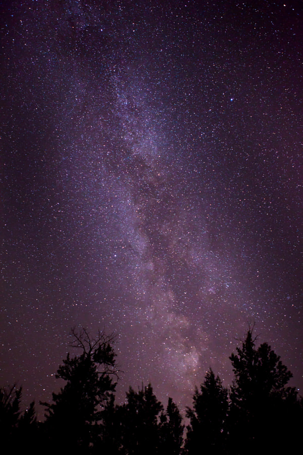 Our Milky Way. Shot from Alberta, Canada.
