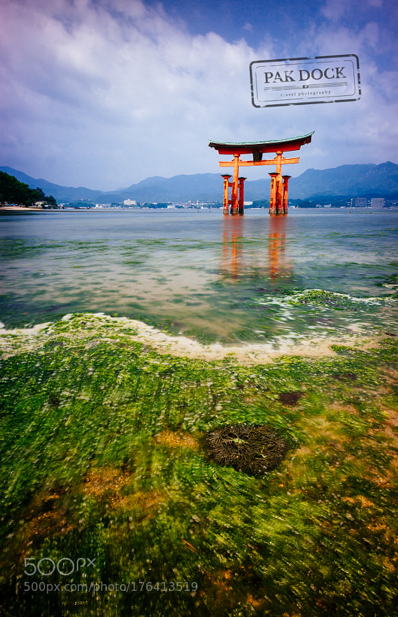 Low tide at the Great Torii - Miyajima
